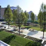 Inaugurazione biblioteca degli alberi
